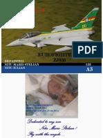 Eurofighter Zj 936