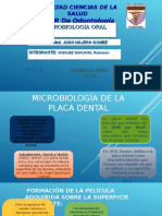 Microbiología de La Placa Dental