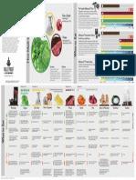 Bulletproof Diet Infographic Vector