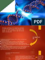 Genetica y Terapia