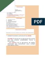 Doc1 Anatomía y Fisiología Animal