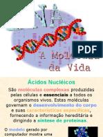acidos_nucleicos.ppt