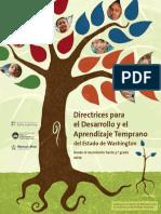 Guidelines Spanish