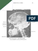 Tratado de anatomia humana Quiroz tomo I_099.pdf