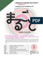 Marugoto Module 2