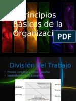 Principios Basicos de La Organizacion (Renan)