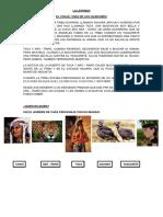 Actividades Adaptadas Con La Leyenda Del Chajá