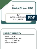 Chf Nyha II-III(Indah)