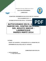 informe proyeccion final tercer ciclo 2014 1.docx