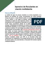 Efecto Depresivo de Floculantes en Flotación Molibdenita