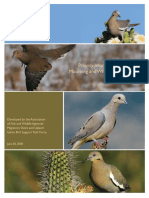 info-needs-mourning-and-white-winged-doves