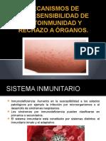 Mecanismos de Hipersensibilidad de Autoinmunidad y Rechazo A