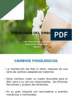 1. Fisiologia Del Embarazo
