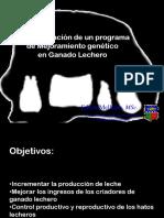 Implem Mejora Cusco 2010
