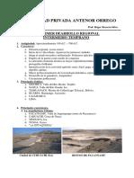 primer desarrollo reguional.pdf