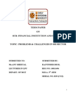 Fis Term Paper on Problems & Challenges in Ssi Sector