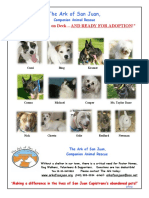Arkflyer Adoptions