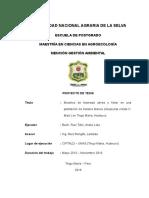 Py Modelos de Biomasa Aérea y Foliar - Maestría