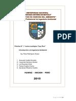 informe 2015 introcuccion