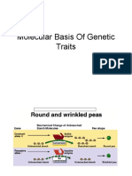 Molecular Basis of Genetic Traits St