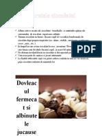 Secretele Ciocolatei