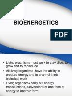 Bio Energi