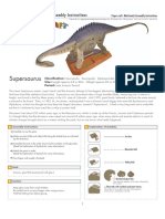 Supersaurus i e a4