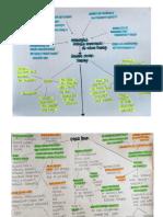Curriculum Idea Web