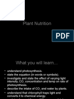 plant nutrition ppt