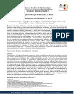Produção e Utilização de Briquetes No Brasil