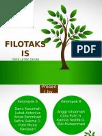 FILOTAKSIS