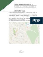 DIAGNOSTICO SITUACIONAL DEL PUESTO DE SALUD CHILPINILLA.docx