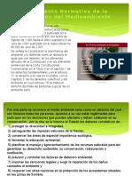 Normatividad.ppsx