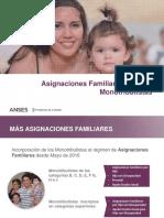 AAFF PARA MONOTRIBUTISTAS_PDF (2).pdf