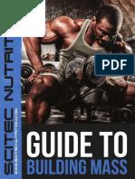 guide_to_building_mass_en.pdf