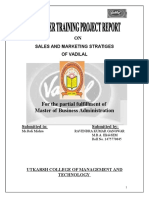 VADILAL Marketing Report1