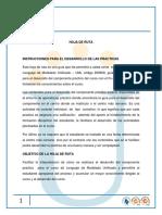 INSTRUCCCION PARA DESARROLLO DE LAS PRACTICAS.pdf