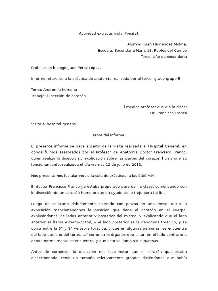 Atractivo Anatomía De La Escuela Secundaria Modelo - Anatomía de Las ...