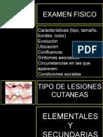 LESIONES PRIMARIASl