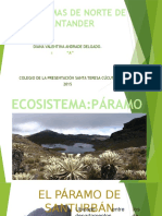 ECOSISTEMAS -DIANA.pptx