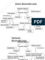 3°MEDIO(Síntesis biomoléculas, Célula, Tejido, Membrana celular  2016   1er Sem