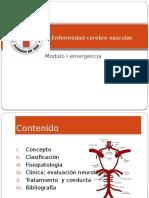 2 Enfermedad Cerebro Vascular