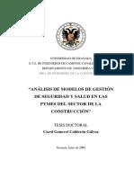 16155129.pdf