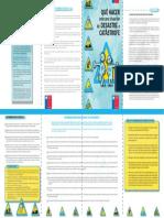 201503051143050.Post Emergencia DOCENTES.pdf