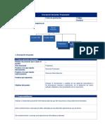 Descripción y Perfil de Programador.doc