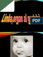 limba_si_igiena_nasului_si_a_limbii.ardelean_simina_cl._avii.ppt