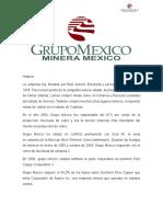 Minera Mexico