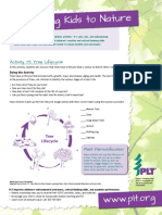 Plt Activity 79 Tree Lifecycle Copy