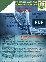 GENÉTICA III - 1 Estructura de Los Acidos Nucleicos