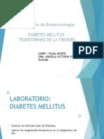 Laboratorío Clínico - Diabetes